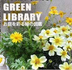 GREEN LIBRARY お庭を彩る緑の図鑑
