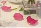 パーティーテーブル1