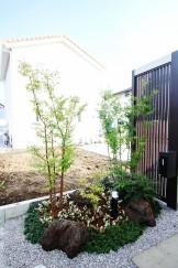 浮島 シンボルツリー ソヨゴ