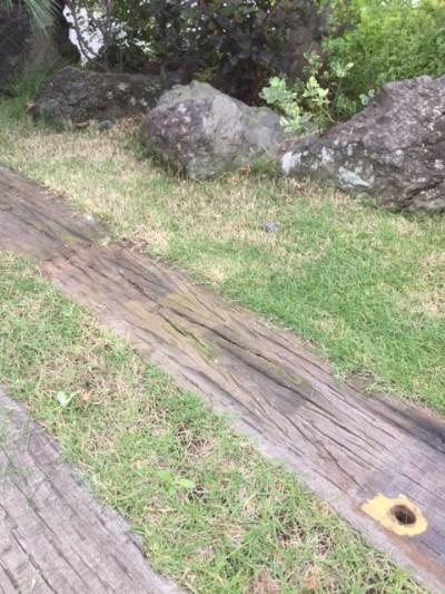 芝 芝刈り 埼玉県 川越市